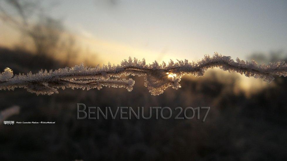 2017_hr