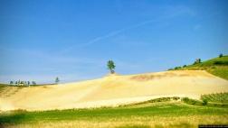 Contrasti di colore delle Colline del Monferrato